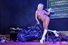 Lustography-erotic-shows09